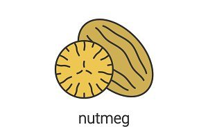 Nutmeg color icon