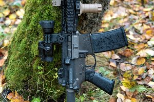 Ar-15 carbine In The Forest