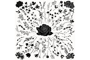 Vector Florals Black Shapes