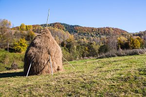 Hay stack on the meadow
