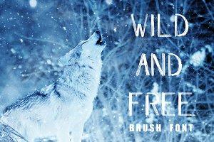 WILD & FREE Brush Font