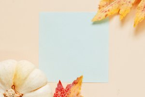 Blank paper with pumpkin and autumn