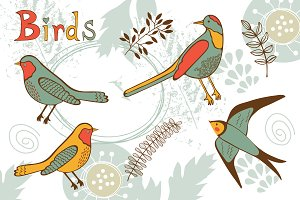 Birds graphics and patterns