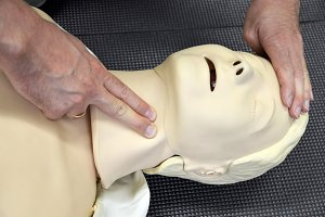 First aid medical practice mannequin or dummy, Check pulse on neck