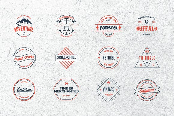 12 Vintage Logos in Logo Templates - product preview 1