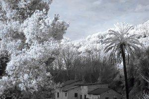 Ruined farm - infrared shot