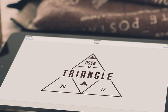 12 Vintage Logos in Logo Templates - product preview 4