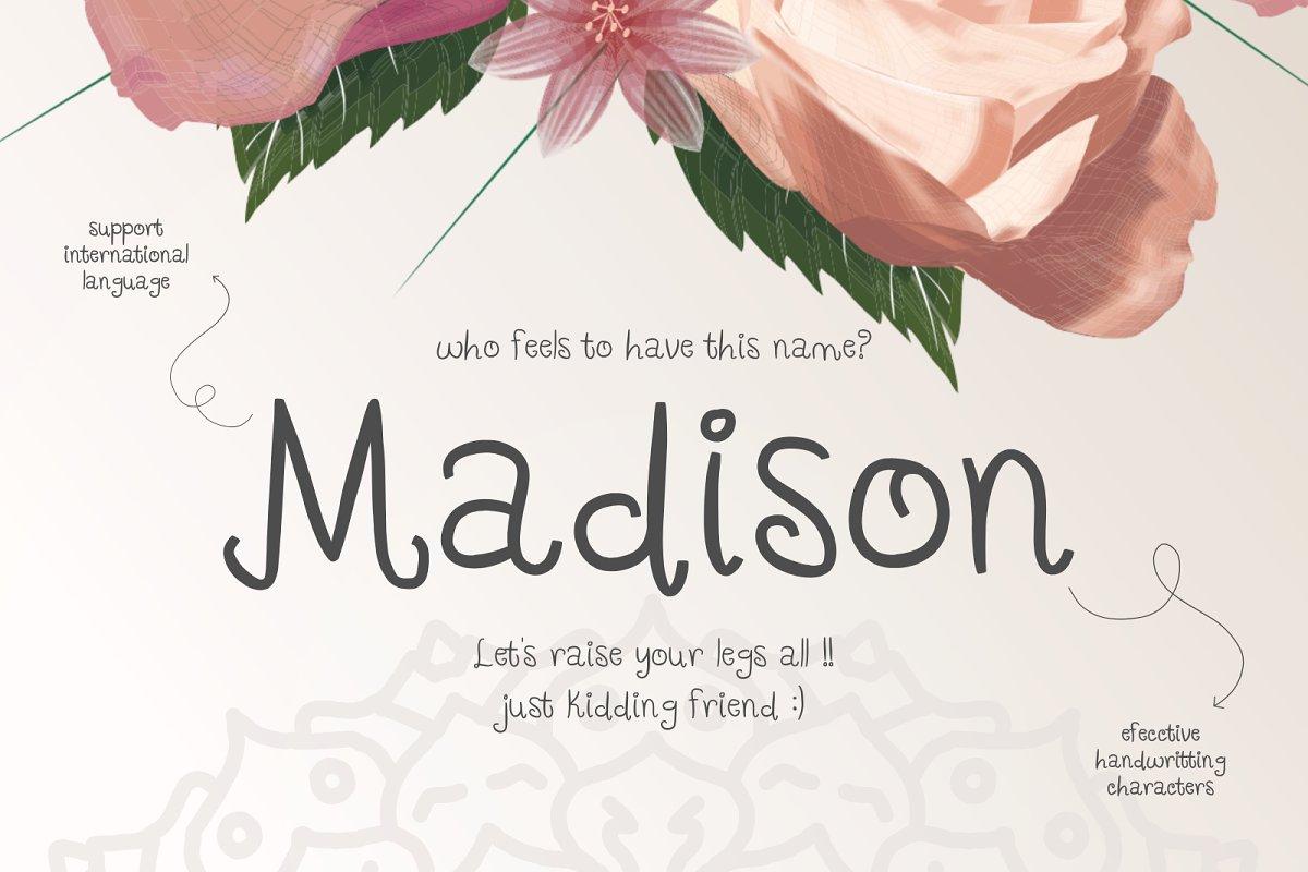Its Madison Sans Serif Fonts Creative Market