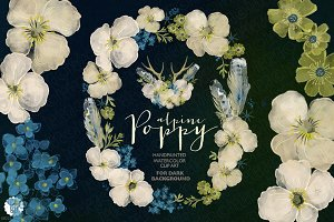 Watercolor wreath alpine poppy dark