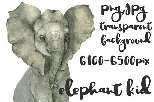 Elephant kid watercolor