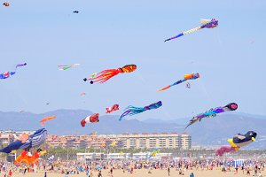 Kite Festival on the beach
