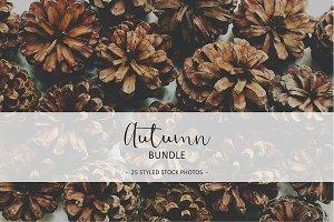 Autumn Flat Lay Bundle