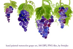 Watercolor Grapes