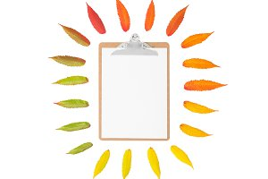 Autumn leaves clipboard Flat lay