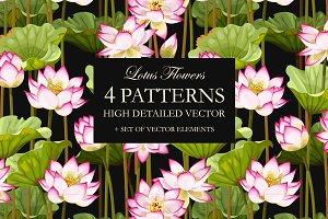 Lotus Patterns
