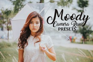 Camera Raw Preset Collection