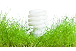 Green Grass With Lightbulb