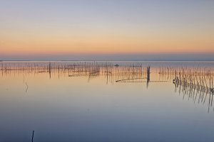 Sunset at Albufera lake