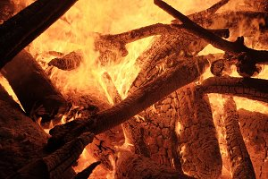Burning firewood logs in flames