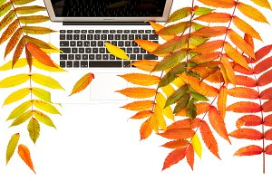 Laptop autumn leaves Flat lay