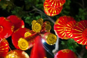 red lanterns on lunar new year