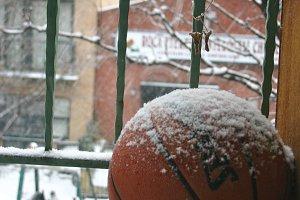 Brooklyn Winter
