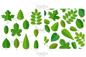 Seamless pattern leafs. Vector flat color illustration. Isolated white background
