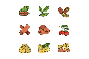 Spices color icons set