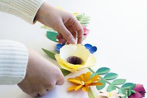 Paper craft flower collection