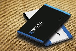 Corporate Business Card SE0329