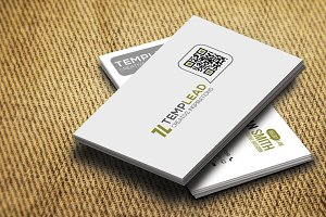 Corporate Business Card SE0330