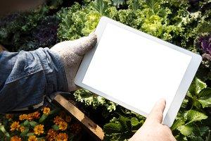 Hand holding digital tablet (PNG)