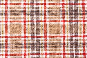 Red and brown checkered cloth