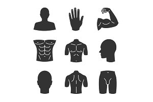 Male body parts glyph icons set