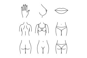 Female body parts linear icons set