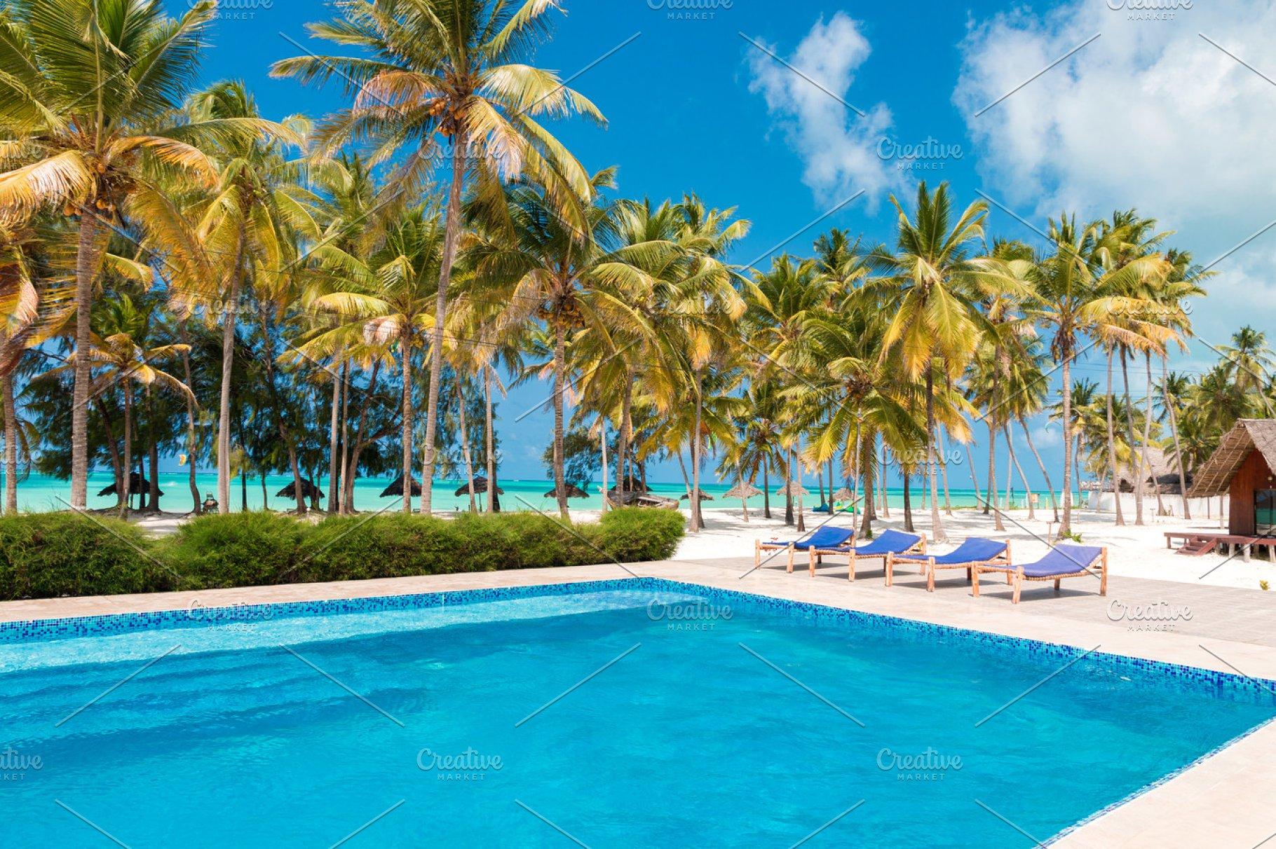 Tropical Swimming Pool ~ Holiday Photos ~ Creative Market