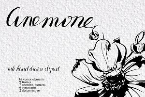 Calligraphy anemones