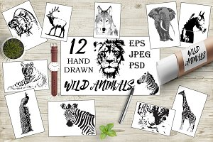 Hand drawn wild animals