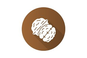 Walnut flat design long shadow glyph icon