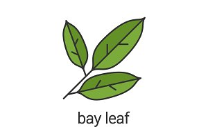 Bay leaf color icon
