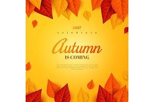 Fall template design