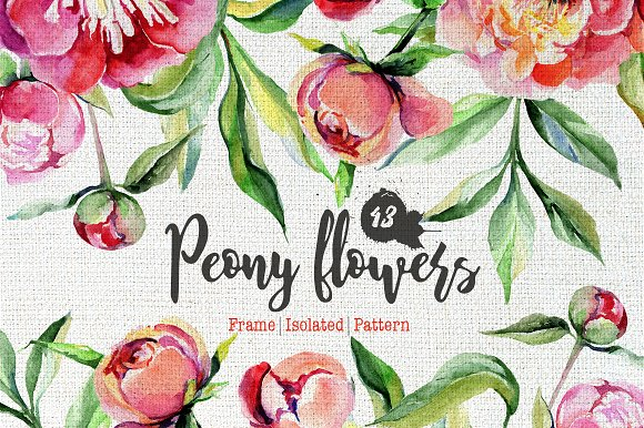Peony flowers PNG watercolo-Graphicriver中文最全的素材分享平台