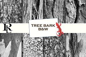 Tree bark digital paper