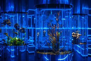 oceanarium interior photo
