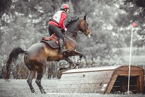 Cross country, rider on horse jump