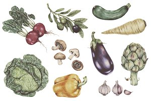 Hand drawn vintage vegetables (PNG)