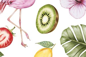 Hand drawn watercolor of fruit