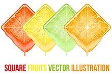 Unique Set of icons Square fruits sl