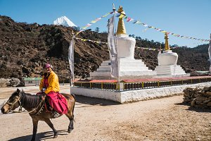 Tibetan lama on the horse