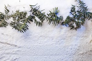 Snowy christmas background with fir branches.